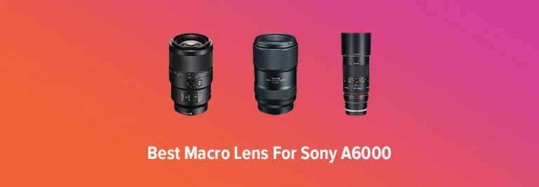 Best Macro Lens for Sony A6000