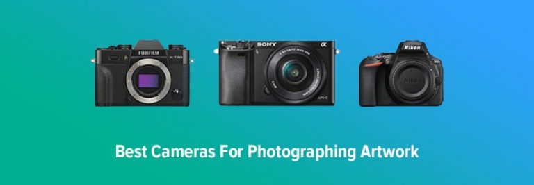 Best Cameras for Photographing Artwork